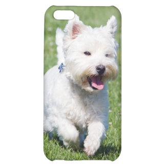 West Highland White Terrier, westie dog cute photo iPhone 5C Cases