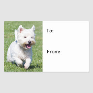 West Highland White Terrier, westie dog cute photo Rectangular Sticker