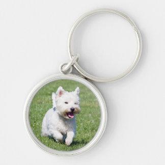 West Highland White Terrier, westie dog cute photo Silver-Colored Round Keychain