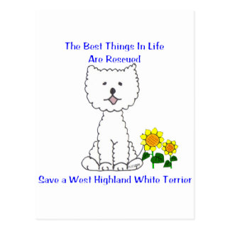 West Highland White Terriers Best Things In Life Postcard