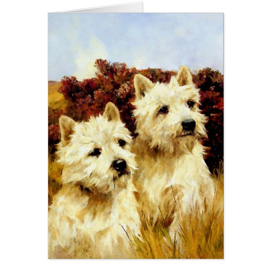 West highland White Terriers - Wardle Card