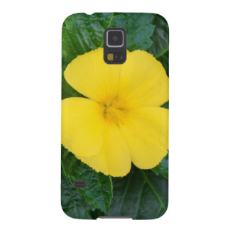West Indian Holly Samsung Galaxy S5 Case