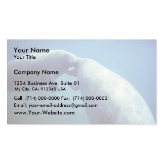 West Indian manatee Business Cards