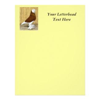 West of England Tumbler Red Baldhead Letterhead