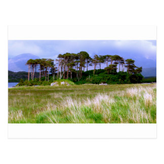 """West of Ireland Landscape"" Postcard"