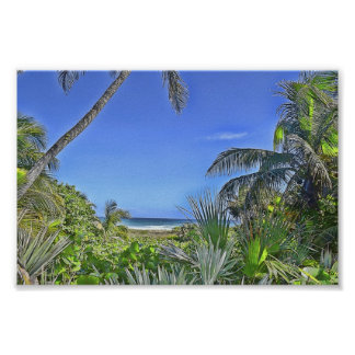 West Palm Beach Paradise Poster