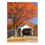 West River Covered Bridge and Oak Vermont Postcards