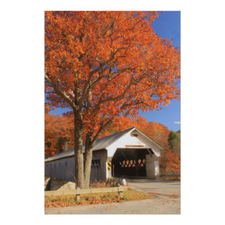 West River Covered Bridge and Oak Vermont Print