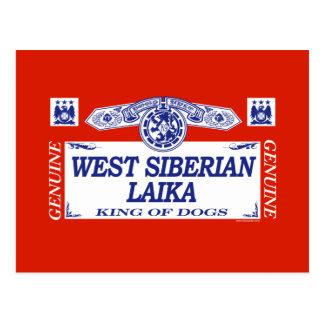 West Siberian Laika Postcard