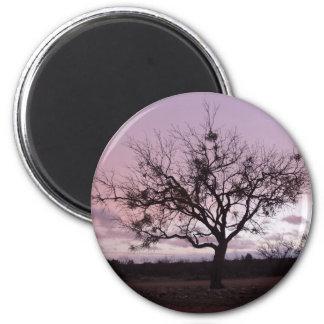 West Texas Sunset Magnet