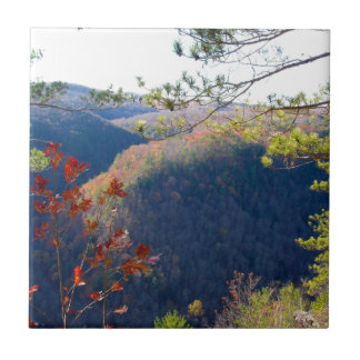 West view of the Pa Grand Canyon.JPG Ceramic Tile