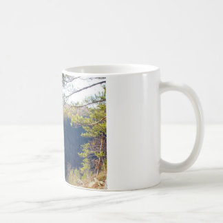 West view of the Pa Grand Canyon.JPG Coffee Mug