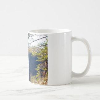 West view of the Pa Grand Canyon.JPG Coffee Mug