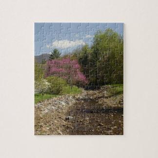 West Virginia Creek Puzzle