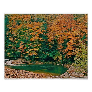 West Virginia Fall Trout Stream Scene Poster