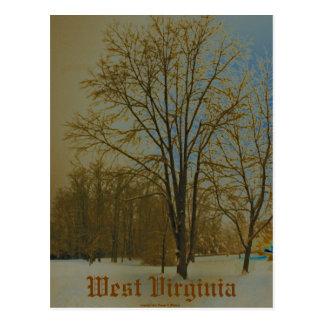 West Virginia in Snow Post Cards