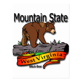West Virginia Mountain State Black Bear Postcard