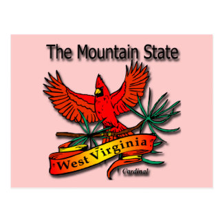 West Virginia Mountain State Cardinal Post Cards