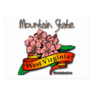 West Virginia Mountain State Rhododendron Postcard
