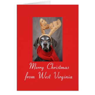 West Virginia reindeer pointer merry x-mas Card