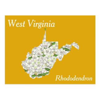 West Virginia State Flower Collage Map Postcard
