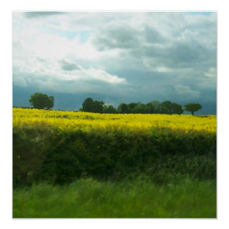 West Yorkshire in spring, on canvas Poster