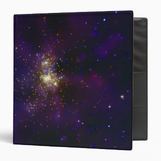 Westerlund 2, a young star cluster binder