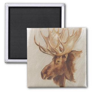 Western American Animal Study | Moose Portrait Magnet
