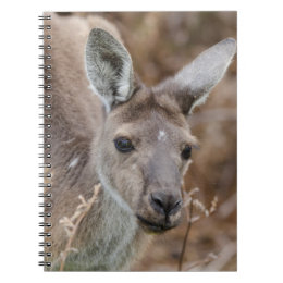 Western Australia, Perth, Yanchep National Park Notebook
