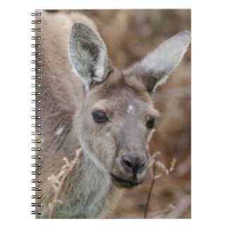 Western Australia, Perth, Yanchep National Park Spiral Note Book
