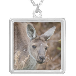 Western Australia, Perth, Yanchep National Park Silver Plated Necklace