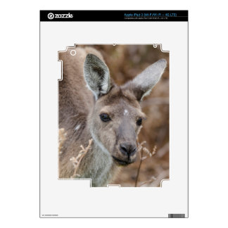 Western Australia, Perth, Yanchep National Park Skins For iPad 3