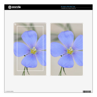 Western Blue Flax Blossom Decals For Kindle Fire
