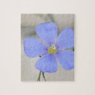 Western Blue Flax Blossom Jigsaw Puzzle