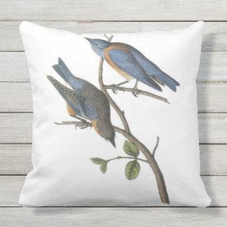 Western Bluebird by Audubon Throw Pillow