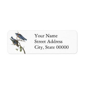 Western Bluebird, John Audubon Return Address Label