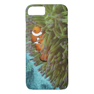 Western Clownfish ( Amphiprion ocellaris ), in iPhone 7 Case
