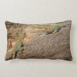 Western Collared Lizards in Colorado Lumbar Pillow