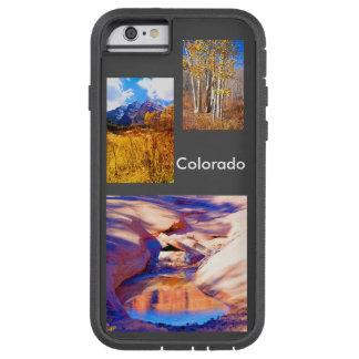Western Colorado Photo Gallery Case