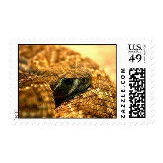 Western Diamondback Rattler Postage Stamps