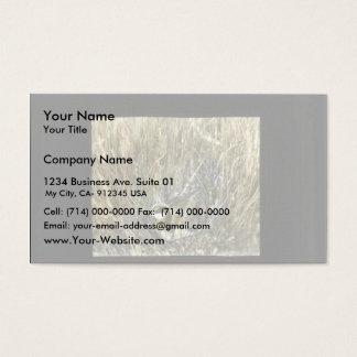 Western Grebe Business Card