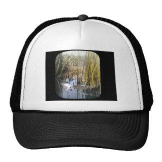 Western Grebe Trucker Hat