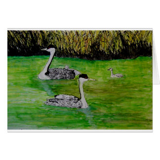 Western Grebe with Young Watercolor Greeting Card