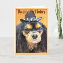 Western Happy Birthday Cavalier King Charles Card