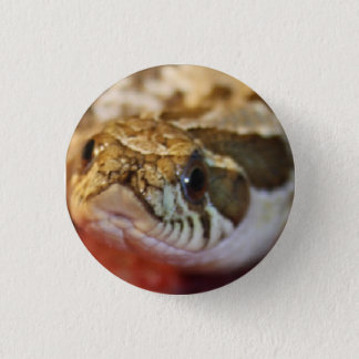 Western Hognose Badge Button