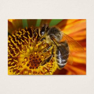 Western Honey Bee Macro Photo Business Card