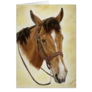 Western Horse Card