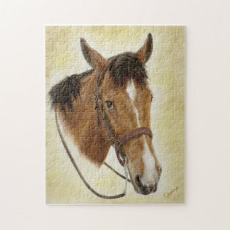 Western Horse Puzzle