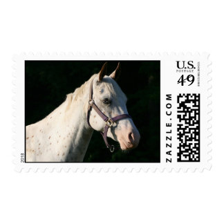 Western Horse Ranch Farm Country Stamp