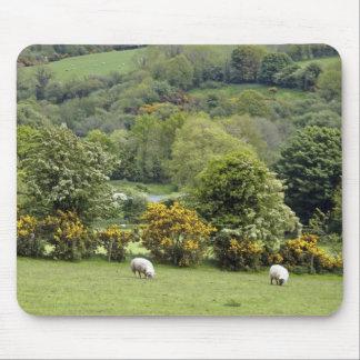 Western Ireland, Dingle Peninsula, broad Mouse Pad